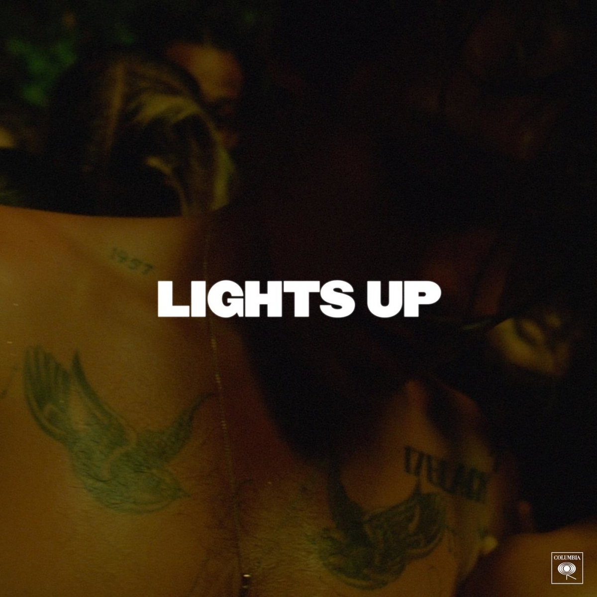 HARRY STYLES - Lights Up
