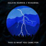 Cavin-Harris-Rihanna-What-You-Cam-For