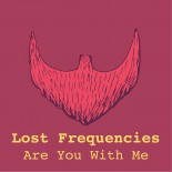 LOST FREQUENCIES ARE YOU WITH ME